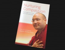 Nurturing Compassion – HH Karmapa