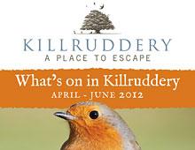 Killruddery Summer Events Poster