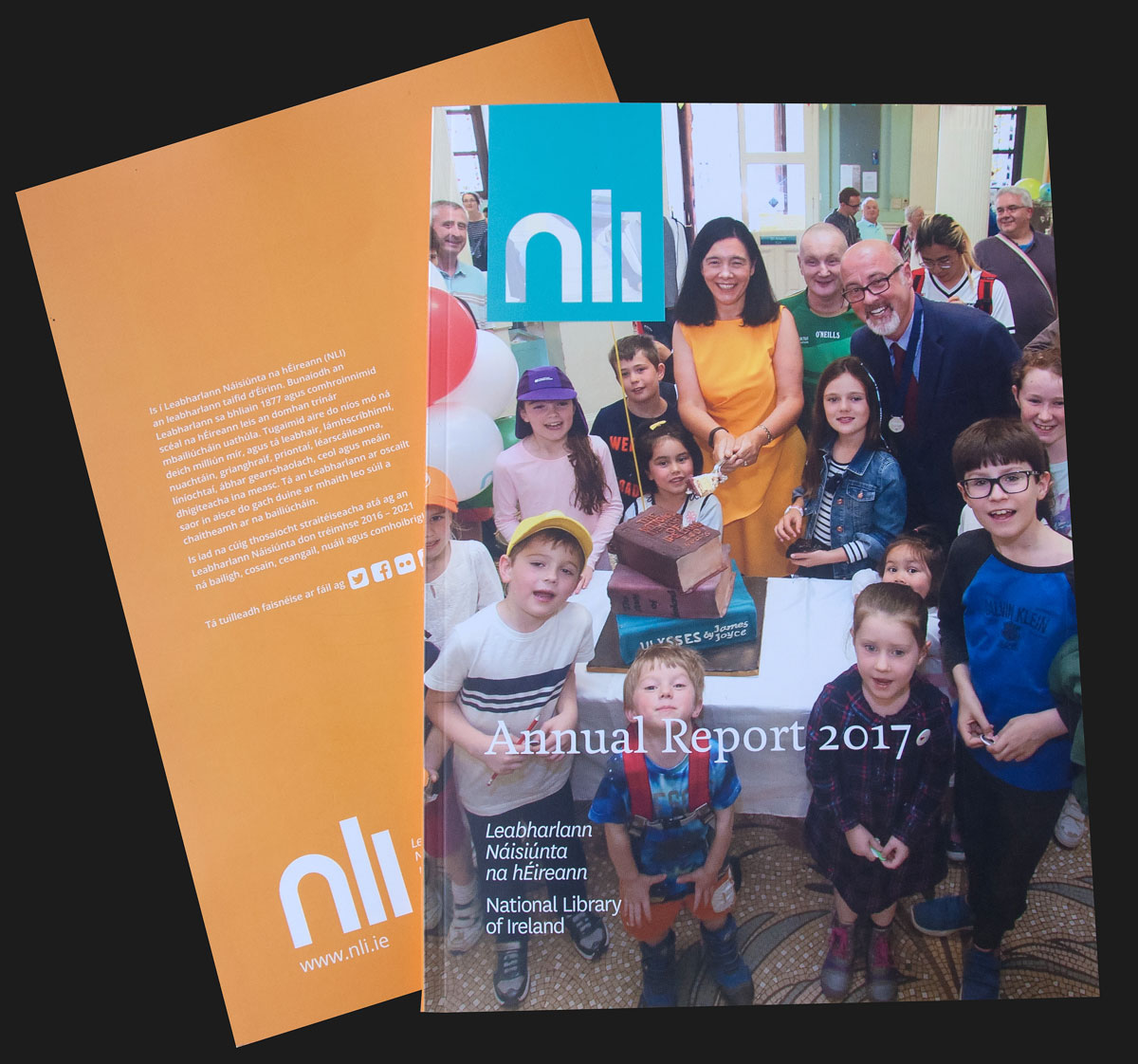 National Library of Ireland Report 2017